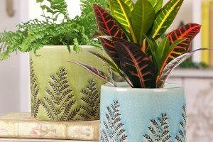 Las 10 mejores macetas de cerámica